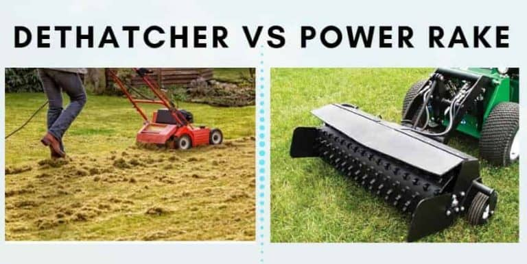 Power rake vs dethatcher - what's the difference