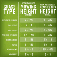 Lawn mowing height chart