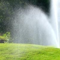 how much water is needed for lawns per week