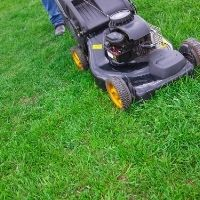 how often should you mow grass