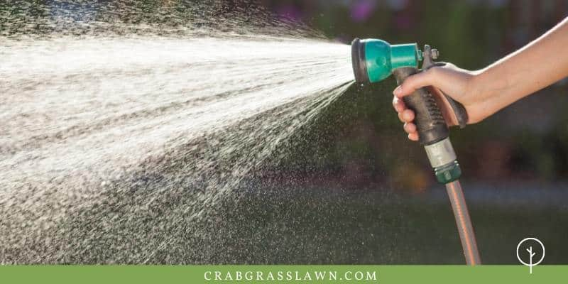 how often to water a yard