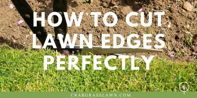 how to cut lawn edges perfectly