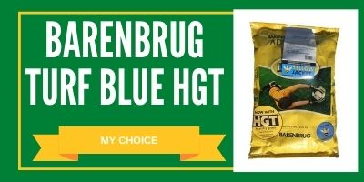 barenbrug turf blue seed review