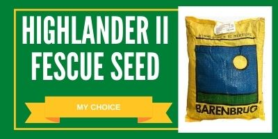 highlander ii tall fescue seed review
