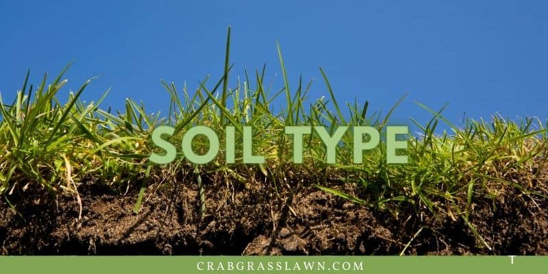 use the right soil type for st. augustine grass