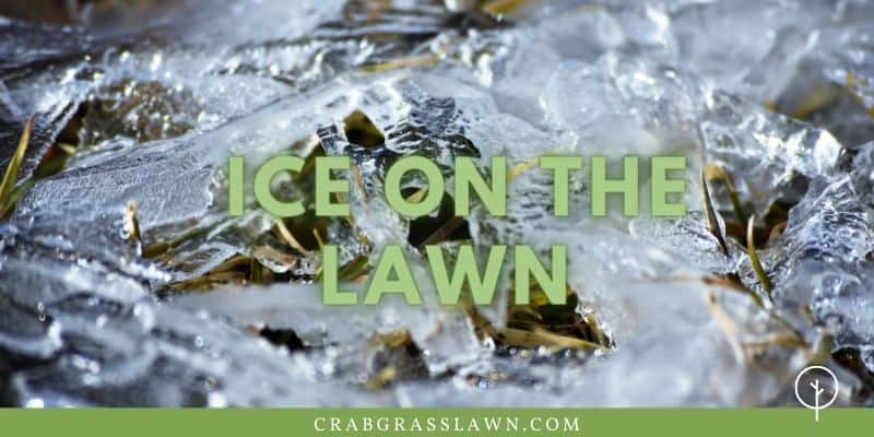 what to do about ice on the lawn