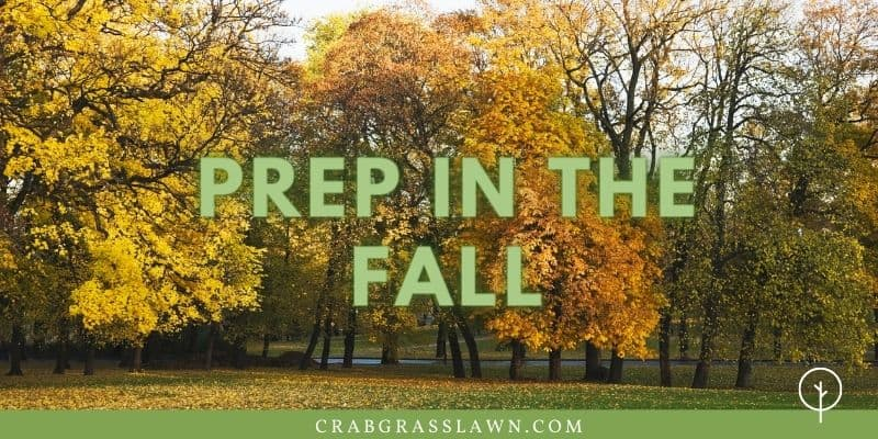 prep your lawn in fall