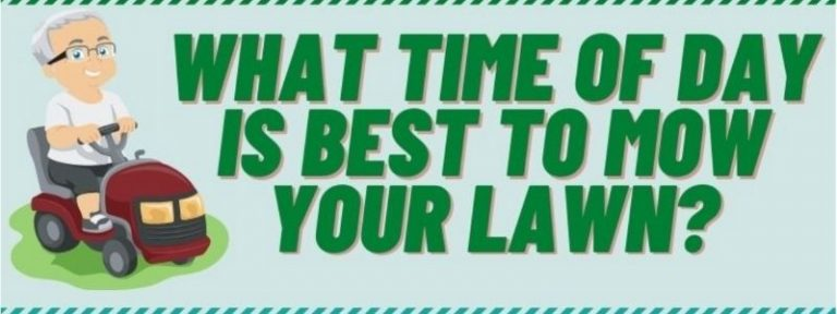 what is the best time of day to cut grass