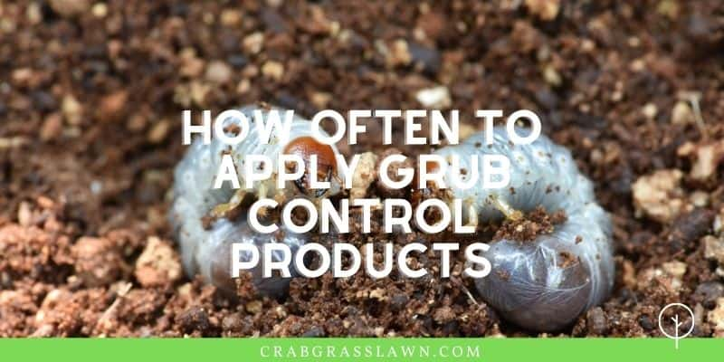 how often to apply grub control products