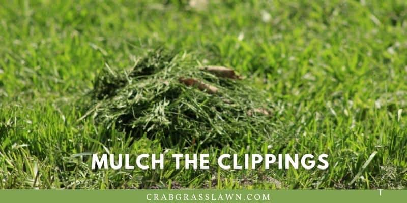 mulch the clippings
