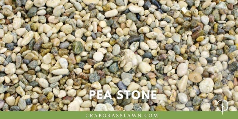 what does pea stone look like?