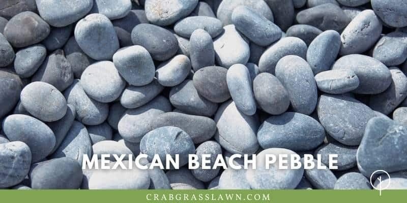 what does Mexican Beach Pebble look like?