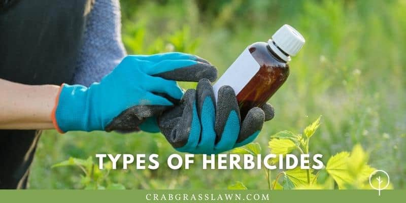 what are the types of herbicides