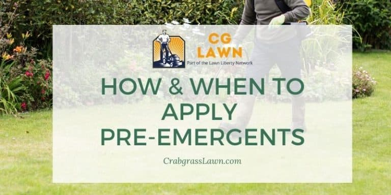 How & When To apply pre-emergent herbicide