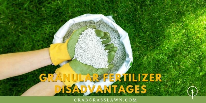 Granular Fertilizer Disadvantages
