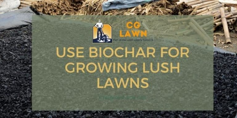 how to use biochar for growing lush lawns