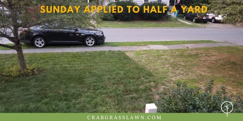 sunday lawn care before & after example