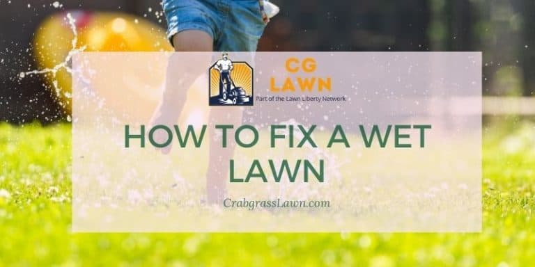 how to fix a wet lawn
